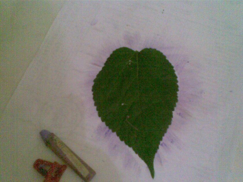 Untuk mendapat bentuk Pancara Hati, gunakan Daun sbg pola, taruh daun di atas kertas.