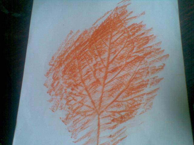 Gunakan daun besar untuk mendapatkan jiplakan tulang daun mirip JALAN RAYA