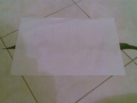 Tutup dgn kertas lain, pastikan ada sisa daun 'mengintip' di kanan kiri