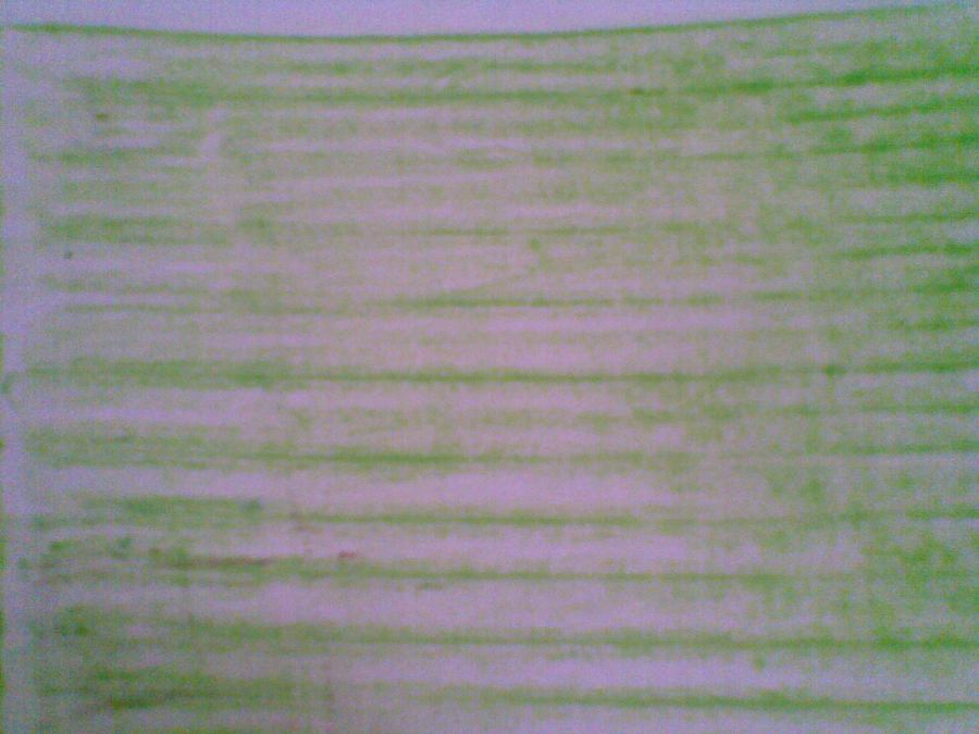 Anda juga bisa memakai daun yang ukurannya melebihi ukuran kertas, sehingga seluruh kertas mendapat goresan garis daun pisang. Ingat...cara menggoreskannya dengan menidurkan cryon, dengan arah arsiran SEARAH dengan arah garis daun pisang.