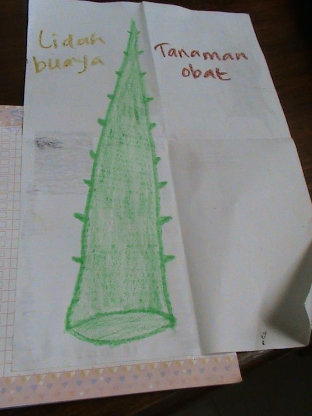 mengajak anak-anak menggambar tanaman obat