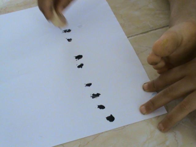 bawang putih diberdirikan sehingga menghasilkan gambar tutul tutul