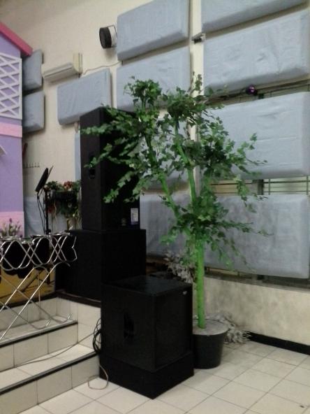 Ada pohon di sudut ruangan , yang siap digantungin tulisan serta gambar wajah pohon