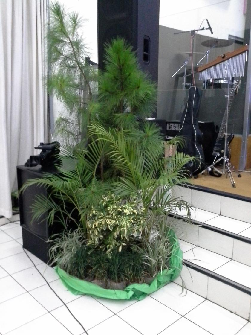 tampak pada sudut kiri juga ada tanaman hias ..serba tanaman dekor kita kali ini, sesuai thema Berbuah Bagi-Mu