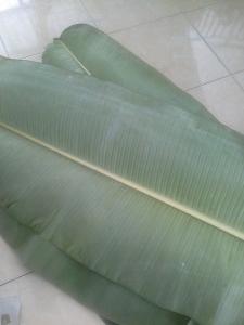 Siapkan daun pisang , Bisa anda beli di pasar atau berburu di kebun.
