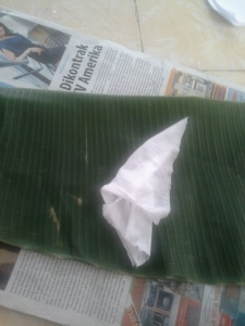 bersihkan daun menggunakan tissue basah